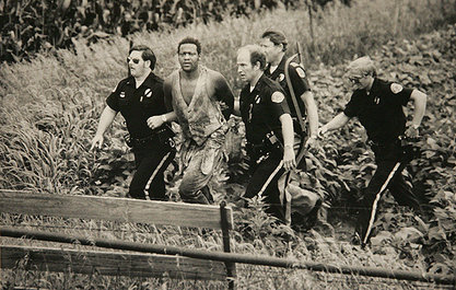 "From left to right, Waterloo Police Officers Tom Shimp and Larry Coffin, State Trooper Marv Messerschmidt and Waterloo Police Officer Mark Shoars, lead James ""T-Bone Taylor"" out of the bean field after being captured. Messerschmidt is credited with capturing Taylor, who was hiding in the bean field. (Roy Dabner/Waterloo Courier archives)"