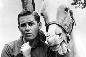 mr-ed-the-horse-with-alan-young